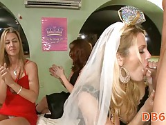 Cute bride sucking stripper cock